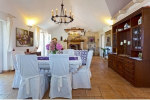 Villa BRA1241