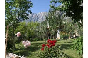 Villa DAL1141